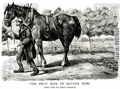 rotten row cartoon humor: Horse drawn rake