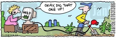 digging up cartoon humor: 'OK, dig that one up' Identifying weeds on her computer.