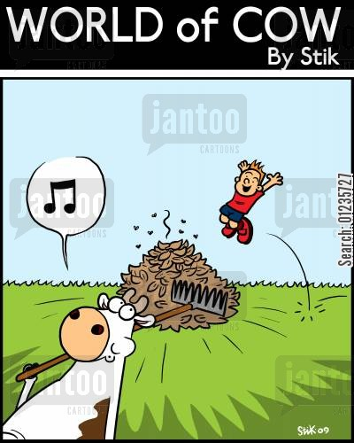 rural living cartoon humor: Cows with a rake in Autumn cannot be trusted.