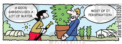 cultivation cartoon humor: -A garden uses a lot of water. -Most of it perspiration.