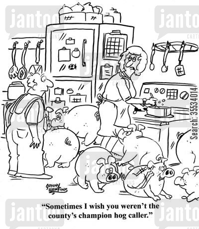 farm sports cartoon humor: Wife to husband about pigs in kitchen: 'Sometimes I wish you weren't the county's champion hog caller.'