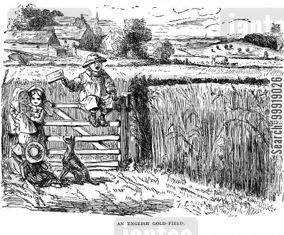 idyllic country cartoon humor: An English Gold-Field
