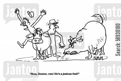 angry bull cartoon humor: 'Run, Doctor, run! He's a jealous fool!'