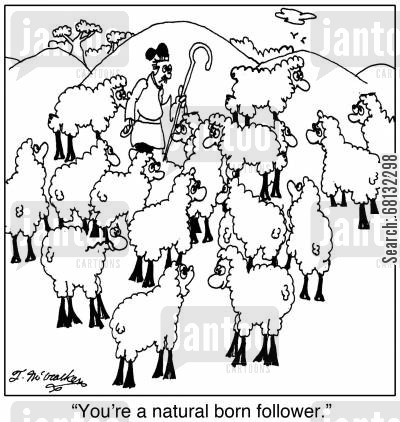 sheep farmer cartoon humor: 'You're a natural born follower.'