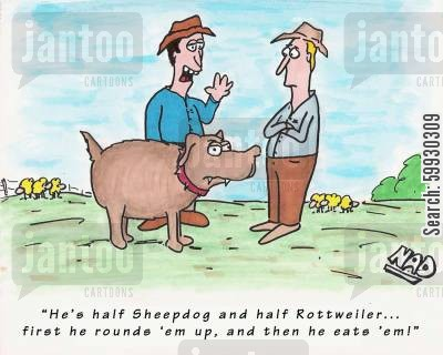 dog breeds cartoon humor: 'He's half sheepdog and half rottweiler... first he rounds 'em up and then he eats 'em!'
