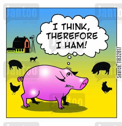 cogito ergo sum cartoon humor: I Think therefore I Ham!