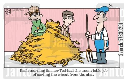 chav cartoon humor: Each morning farmer Ted had the unenviable job of sorting the wheat from the chav'.