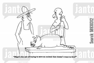 death bed cartoon humor: 'What's the use of trying to save an animal that doesn't want to live?'