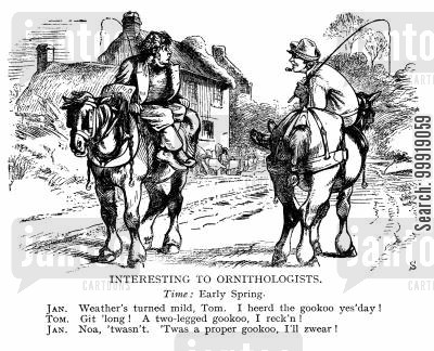 victorian country cartoon humor: Intersting to Ornitholigists
