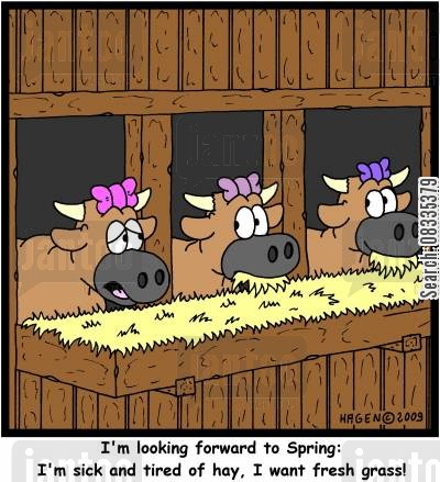 spring time cartoon humor: 'I'm looking forward to Spring: I'm sick and tired of hay, I want fresh grass!'