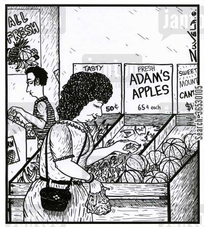 grocer cartoon humor: Adam's apples.