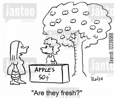 apple tree cartoon humor: Apples, 50c: 'Are they fresh?'