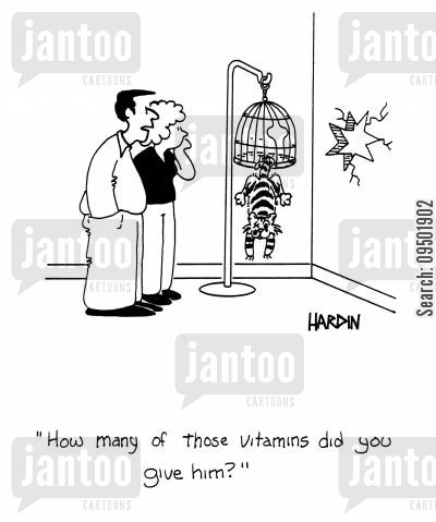 bird lovers cartoon humor: 'How many of those vitamins did you give him?'