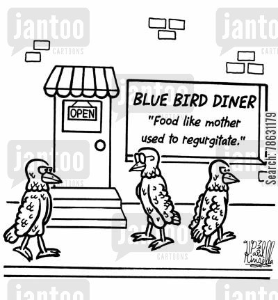 nestling cartoon humor: Blue Bird Diner food like mother used to regurgitate