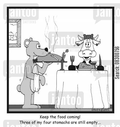 four stomachs cartoon humor: Keep the food coming! Three of my four stomachs are still empty