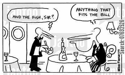 fits the bill cartoon humor: And the fish, sir? Anything that fits the bill.