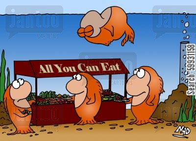 overindulge cartoon humor: All you can eat buffet in a goldfish bowl