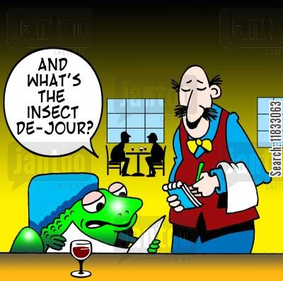 frogs legs cartoon humor: What's the insect de jour?