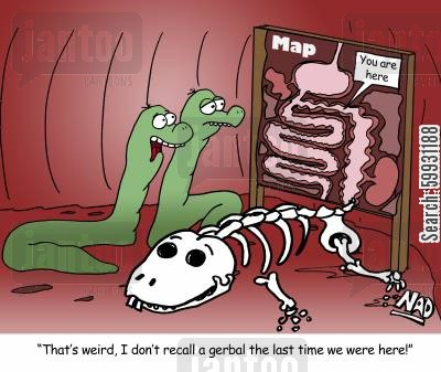 parasites cartoon humor: 'That's weird, I don't recall a gerbal the last time we were here!'