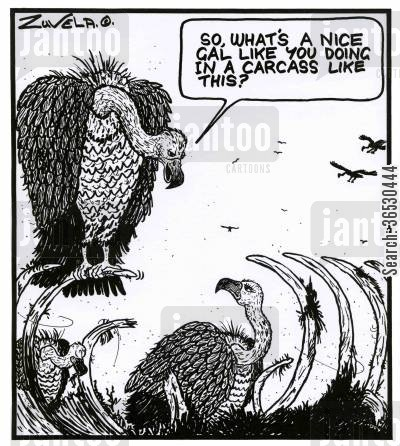 chat-up lines cartoon humor: 'So, what's a nice gal like you doing in a carcass like this?'