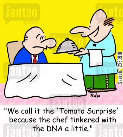 genentic engineering cartoon humor: 'We call it the 'Tomato Surprise' because the chef tinkered with the DNA a little.'