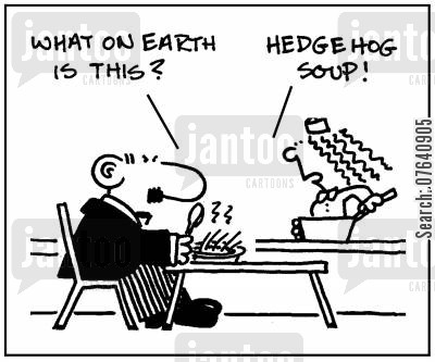 specials boards cartoon humor: 'What on earth is this? Hedgehog soup.'