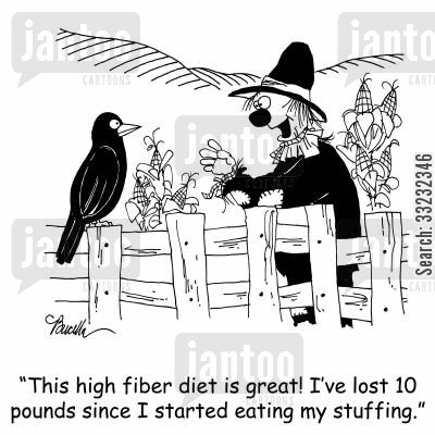 corn fields cartoon humor: 'This high fiber diet is great! I've lost 10 pounds since I started eating my stuffing.'