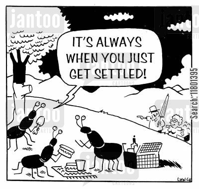 reversal cartoon humor: It's always when you just get settled!