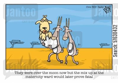 food chain cartoon humor: They were over the moon now but the mix up at the maternity ward would later prove fatal