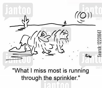 through cartoon humor: 'What I miss most is running through the sprinkler.'