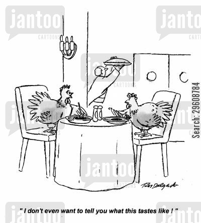 chickens cartoon humor: 'I don't even want to tell you what this tastes like!'