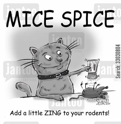 cat and mouse cartoon humor: Mice spice