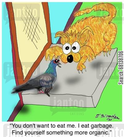 organic foods cartoon humor: 'You don't want to eat me. I eat garbage. Find yourself something more organic.'