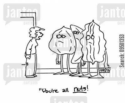 cashew nut cartoon humor: 'You're all nuts!'