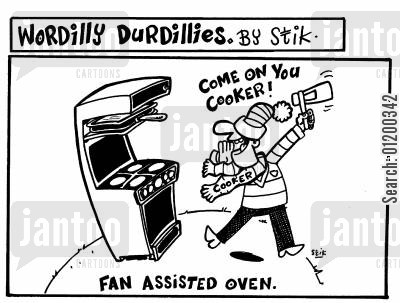 kitchen cartoon humor: Wordilly Durdillies - Fan assisted oven.