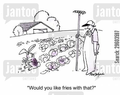 fries cartoon humor: 'Would you like fries with that?'