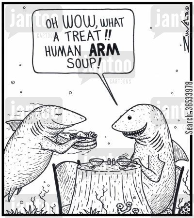 shark attack cartoon humor: Husband Shark: 'Oh WOW,what a treat!! Human ARM soup!' The Shark's world version of Shark Fin soup