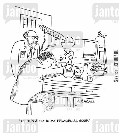 a fly in my soup cartoon humor: 'There's a fly in my primordial soup.'