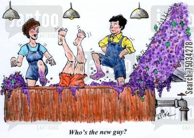 novice cartoon humor: 'Who's the new guy?'