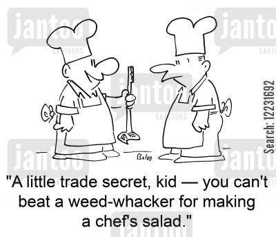 food preperation cartoon humor: 'A little trade secret, kid — you can't beat a weed-whacker for making a chef's salad.'