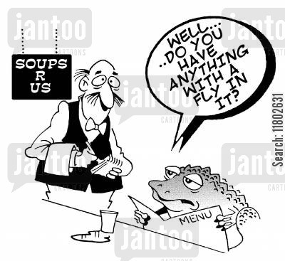 fly soup cartoon humor: Soups r us...frog asks; 'Well...do you have anything with a fly in it?'