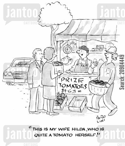 fruit and veg stall cartoon humor: 'This is my wife Hilda, who is quite a tomato herself!'