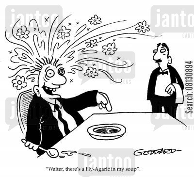 basidiomycete cartoon humor: 'Waiter, there's a Fly-Agaric in my soup.'