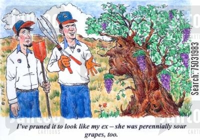 sour cartoon humor: 'I've pruned it to look like my ex - she was perennially sour grapes, too.'