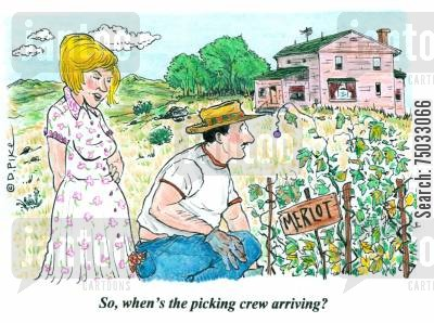 brewers cartoon humor: 'So, when's the picking crew arriving?'