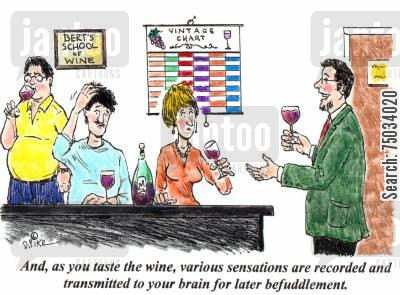 gourmet cartoon humor: 'And, as you taste the wine, various sensations are recorded and transmitted to your brain for later befuddlement.'
