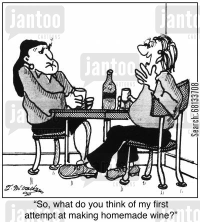 homemade brew cartoon humor: 'So, what do you think of my first attempt at making homemade wine?'