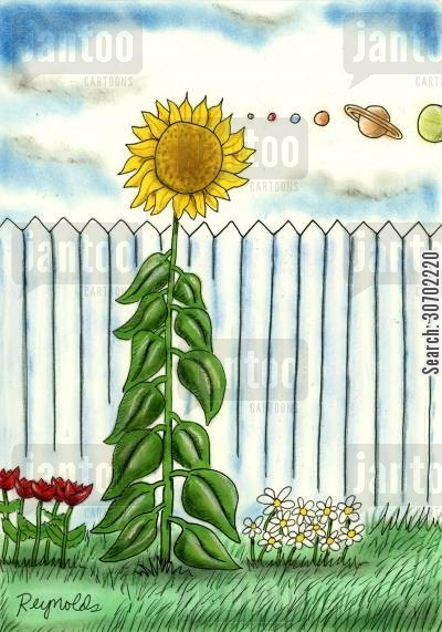 saturn cartoon humor: Sunflower in line with the Planets.