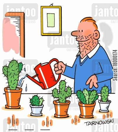 cacti cartoon humor: Cactus owner with a spiky beard.