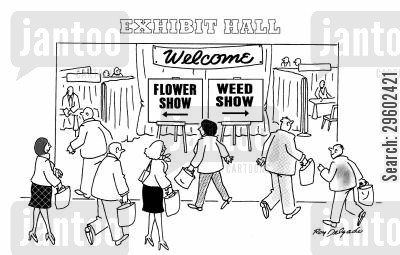 conventions cartoon humor: Flower shows and weed shows.